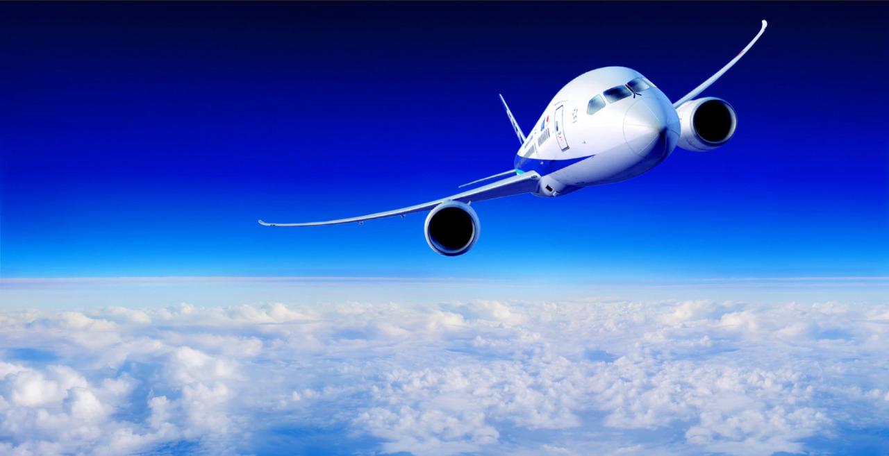 ANA、飛行機、トップ